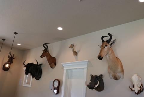美國獵人收藏品26