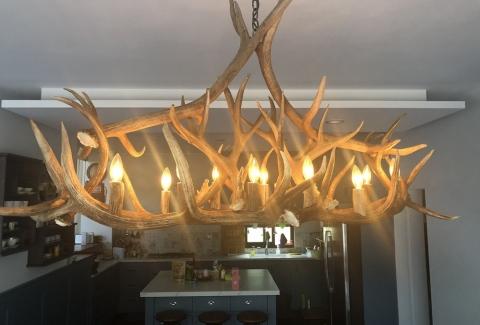 橢圓形餐桌鹿角燈2