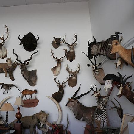 美國獵人的收藏品系列